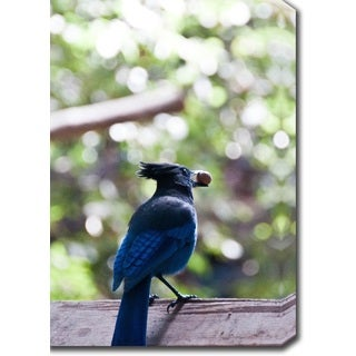 'Blue Bird' Canvas Art