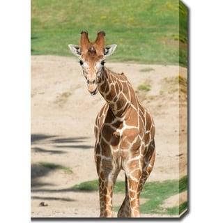 'Giraffe' Canvas Art