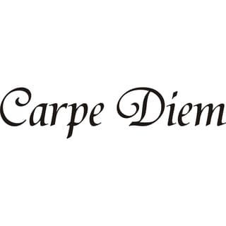 Design on Style 'Carpe Diem' Vinyl Art Quote