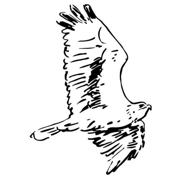 flying bird glossy black vinyl wall decal sticker free shipping on