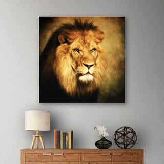 Dragos Dumitrascu 'The King 2' Gallery-wrapped Canvas Art