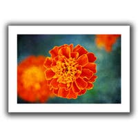 ArtWall Dragos Dumitrascu 'One in Orange' Unwrapped Canvas