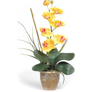 Single-stem Phalaenopsis Silk Orchid Plant (More options available)