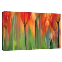 ArtWall Cora Niele 'Orange Tulip' Gallery-Wrapped Canvas
