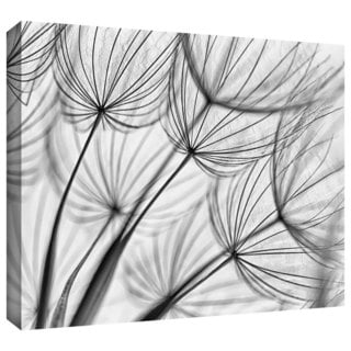 ArtWall Cora Niele 'Parachute Seed II' Gallery-Wrapped Canvas