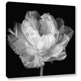 ArtWall Cora Niele 'Tulipa Double Black & White I' Gallery-Wrapped Canvasa
