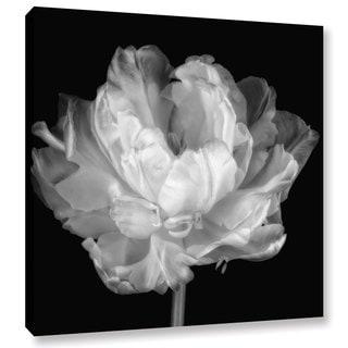 ArtWall Cora Niele 'Tulipa Double Black & White I' Gallery-Wrapped Canvas