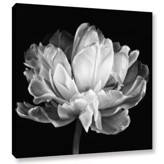 Link to ArtWall Cora Niele 'Tulipa Double Black & White II' Gallery-Wrapped Canvas Similar Items in Canvas Art