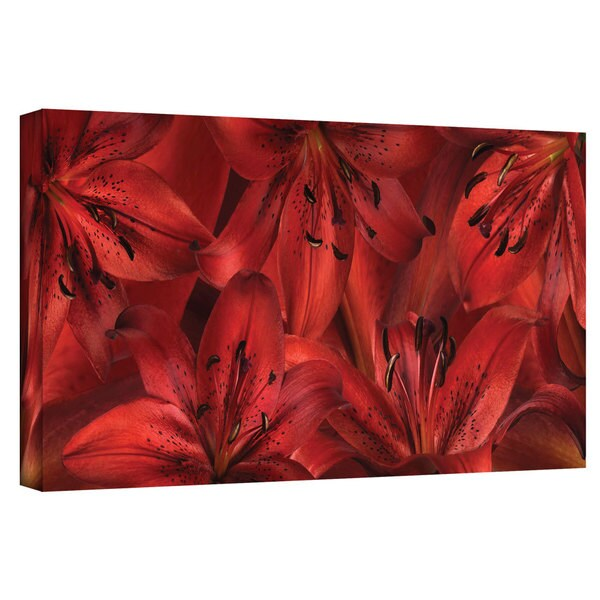 ArtWall Cora Niele 'Lily Landscape Red' Gallery-Wrapped Canvas