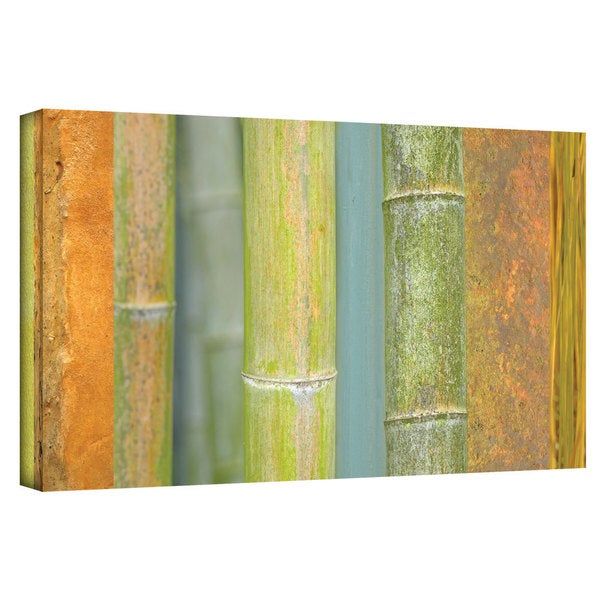 ArtWall Cora Niele 'Bamboo Green Orange ' Gallery-Wrapped Canvas