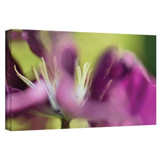 ArtWall Cora Niele 'Clematis Panorama' Gallery-Wrapped Canvas