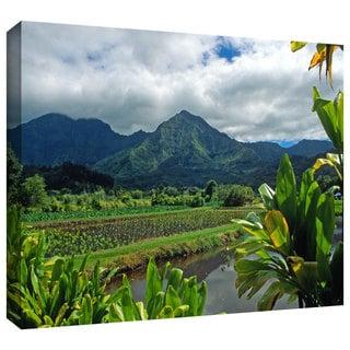 ArtWall Kathy Yates 'A Taro Farm in Hanalei' Gallery-Wrapped Canvas