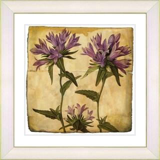 Zhee Singer 'Vintage Botanical No 016 - Antiqued' Framed Fine Art Print
