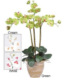 Triple-stem Phalaenopsis Silk Orchid Plant - Thumbnail 2