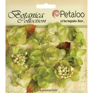Botanica Minis 11/Pkg - Pistachio