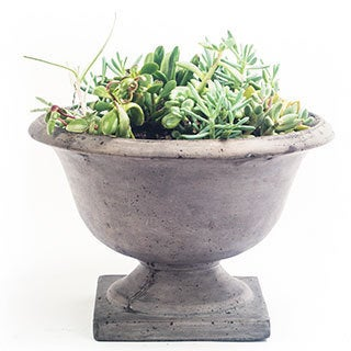 Handmade Eco-friendly Concrete Campagna Decorative Planter (Vietnam)