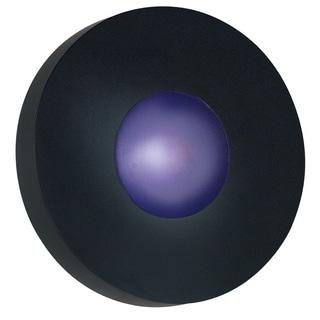 Dalya Large Round 1-light Black Sconce/ Flush Mount