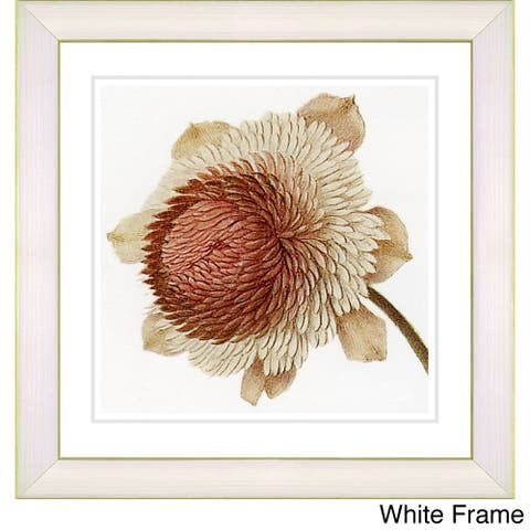 Zhee Singer 'Vintage Botanical No 20c - White' Framed Fine Art Print