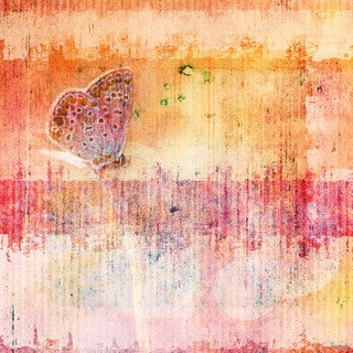 Parves Taj 'Butterfly' Fine Art Canvas Print