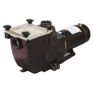 Tidal Wave 1 HP Replacement Pump for In-ground Pools