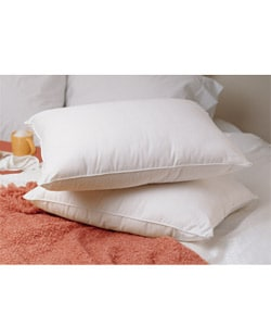 Luxury Soft Goose Down Standard-Size Pillows (Set of 2)