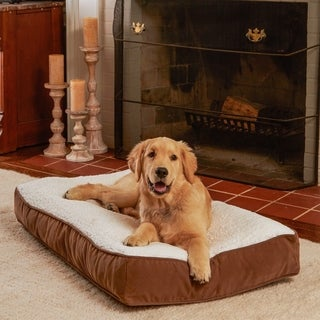 Buster Sherpa Latte Dog Bed