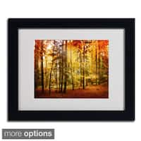 Philippe Sainte-Laudy 'Fall Color' Framed Matted Art
