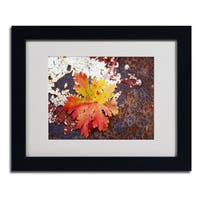 Philippe Sainte-Laudy 'Autumn Rust' Framed Matted Art
