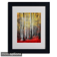 Philippe Sainte-Laudy 'Osmosis' Framed Matted Art