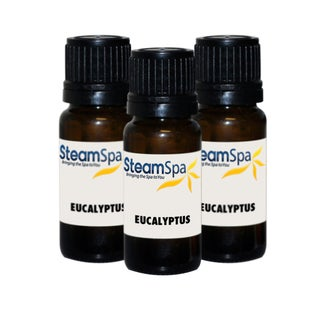 SteamSpa Essence of Eucalyptus Value Pack