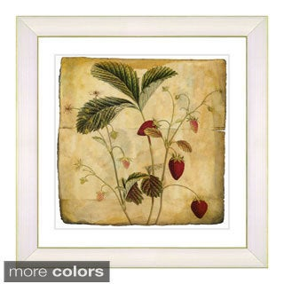 Zhee Singer 'Vintage Botanical No 06 - Antiqued' Framed Fine Art Print