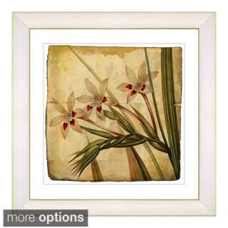 Zhee Singer 'Vintage Botanical No 43 - Antiqued' Framed Fine Art Print