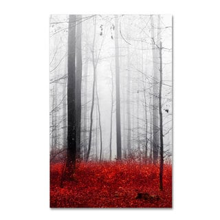 Philippe Sainte-Laudy 'Little Red Carpet' Canvas Art