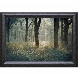 Lars Van de Goor 'Foret De Tenom' Framed Print