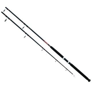 Daiwa Beefstick Sw Spin Rod