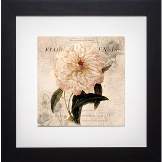 Shop White Peony I By Carol Robinson Framed Art Print