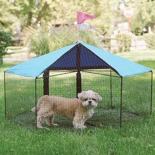 Kittywalk Carousel Outdoor Pet Enclosure