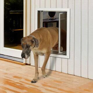 PlexiDor Performance Pet Door XLarge Wall Mount