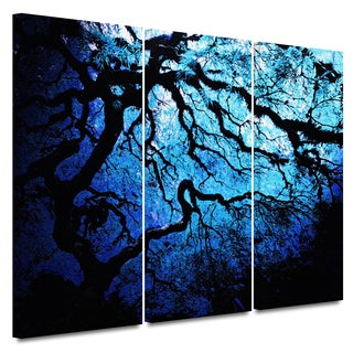 John Black 'Ice Blue Eve: Japanese Tree' Gallery-Wrapped Canvas (3-Piece Set)