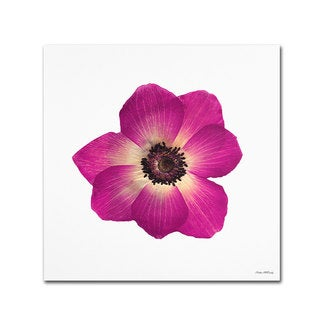 Kathie McCurdy 'Hot Pink Flower' Canvas Art