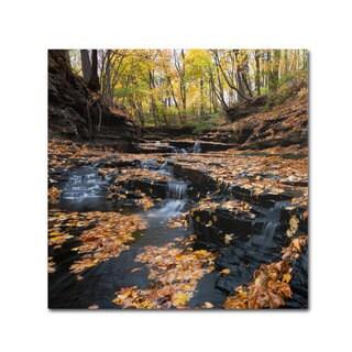 Kurt Shaffer 'Late Autumn Falls' Canvas Art