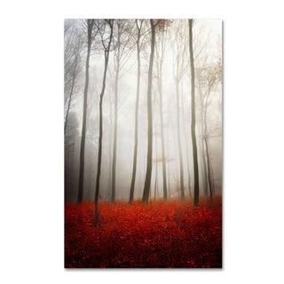 Philippe Sainte-Laudy 'Leafless' Canvas Art