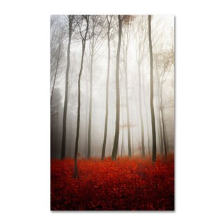 Philippe Sainte-Laudy 'Leafless' Canvas Art