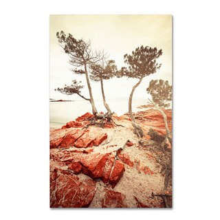 Philippe Sainte-Laudy 'Twisted Line' Canvas Art