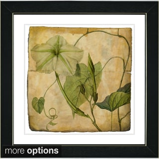 Zhee Singer 'Vintage Botanical No 29 - Antiqued' Framed Fine Art Print