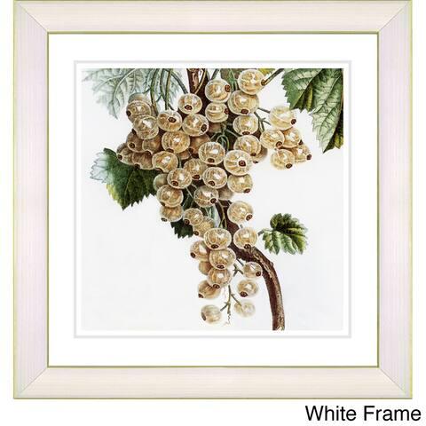 Zhee Singer 'Vintage Botanical No 09 - White' Framed Fine Art Print