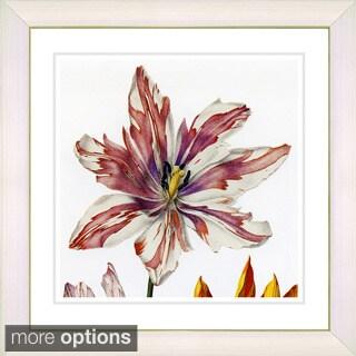 Zhee Singer 'Vintage Botanical No 24 - White' Framed Fine Art Print