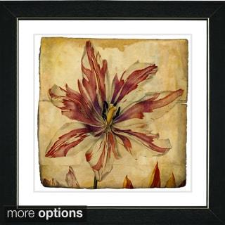 Zhee Singer 'Vintage Botanical No 24 - Antiqued' Framed Fine Art Print