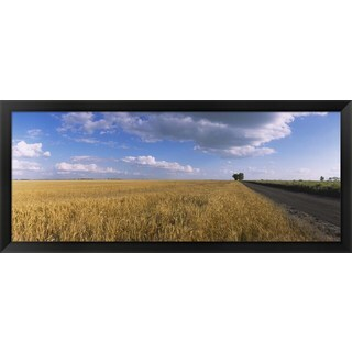 'Wheat crop in a field, North Dakota' Framed Panoramic Photo|https://ak1.ostkcdn.com/images/products/8976723/Wheat-crop-in-a-field-North-Dakota-Framed-Panoramic-Photo-P16184180.jpg?_ostk_perf_=percv&impolicy=medium