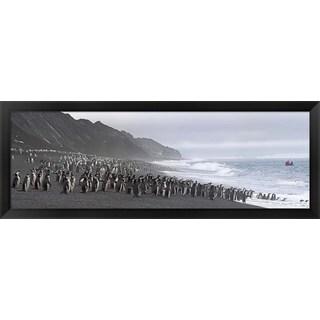 'Chinstrap penguins, Deception Island, Antarctica' Framed Panoramic Photo